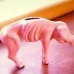 Como resolver as suas dívidas